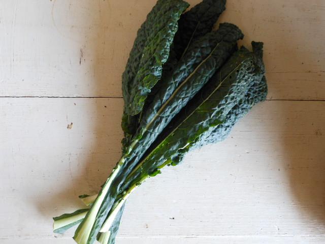 自然栽培カーボロネロ(黒キャベツ)