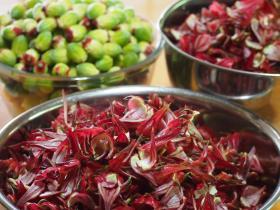 赤い部分がジャムに、緑の種は乾燥させて来年蒔く