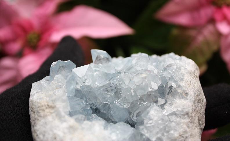 結晶も透明感があります。