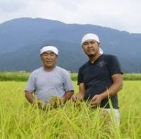八海山のふもと、飯塚農場の田んぼ