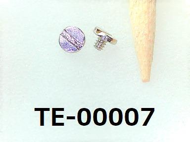 <p>材質:鉄<br>焼き:無 <br>サイズ:太さ0.6ミリ × 長さ0.8ミリ<br>頭部の溝:マイナス</p><p>頭径1.4ミリ 頭高0.3ミリ<br>表面処理:ニッケル</p>