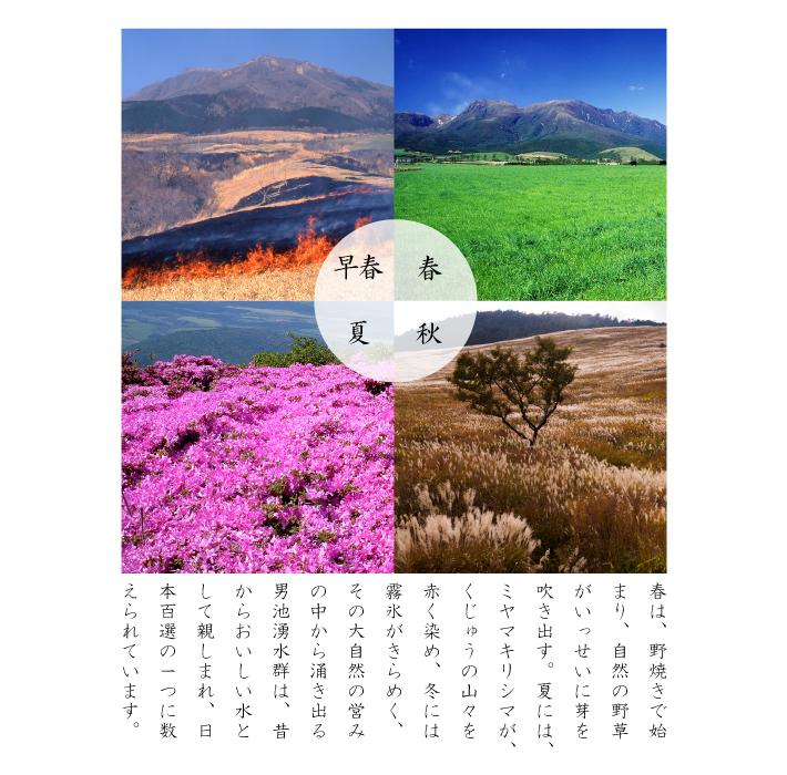 くじゅう連山の湧水20L  送料無料