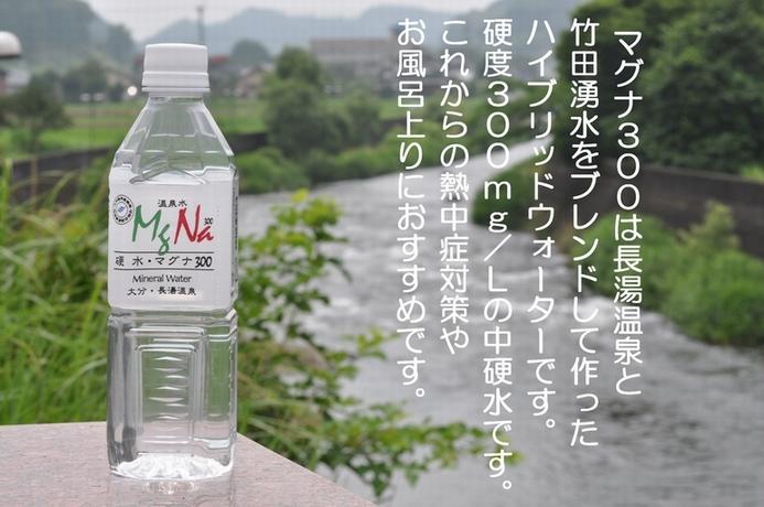 マグナ300(500ml) 24本 送料無料