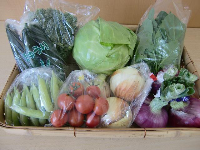 契約農家からの新鮮、安心、安全野菜の詰め合わせ。<br>旬の野菜をどうぞお楽しみください。<div><br></div><div>当日の出荷状況により、価格は多少変化します</div><div>ご了承ください</div><div><br>季節によって内容は変更します。<div>(写真は一例です)<br>※ご希望野菜があれば備考欄にご記入ください。</div><div>旬の野菜のためご希望に添えない場合もあります。</div><div>ご希望の方はクール便を一緒にお申し込みください。</div></div>