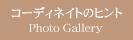 ◆ コーディネイトのヒント(Photo Gallery)