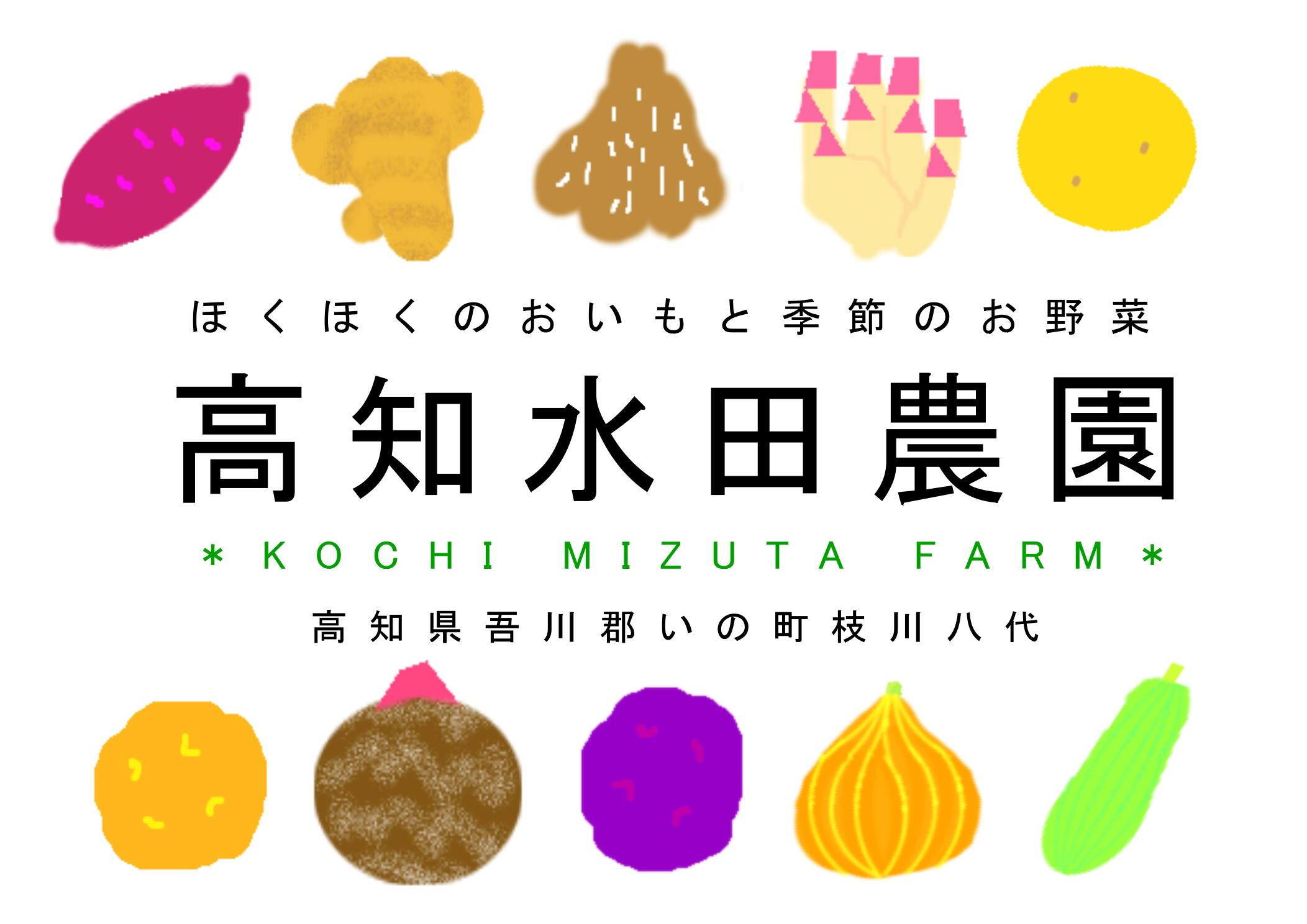 高知水田農園*ベジフルMarket