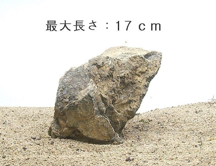 小型水槽の親石に成ります。<br /><br />親石に最適一品<br />九州産の希少な石です。<br />今回限りの販売に成ります。