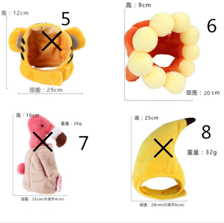 猫 帽子 6番