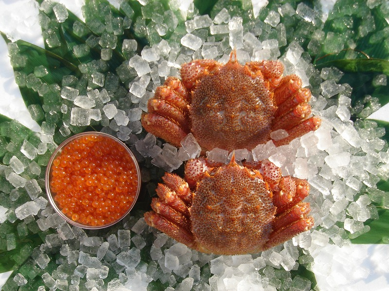 旨味・甘味・味噌の味 毛蟹が一番旨い!