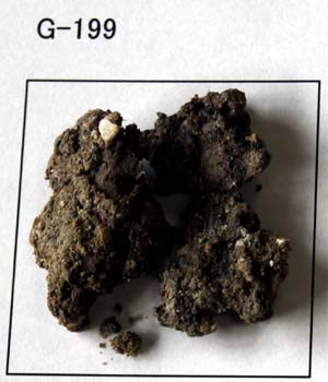 G-199 黒蛙目粘土