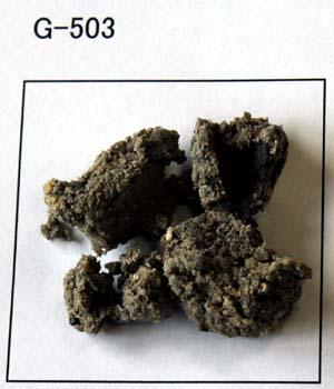 G-503 青蛙目粘土