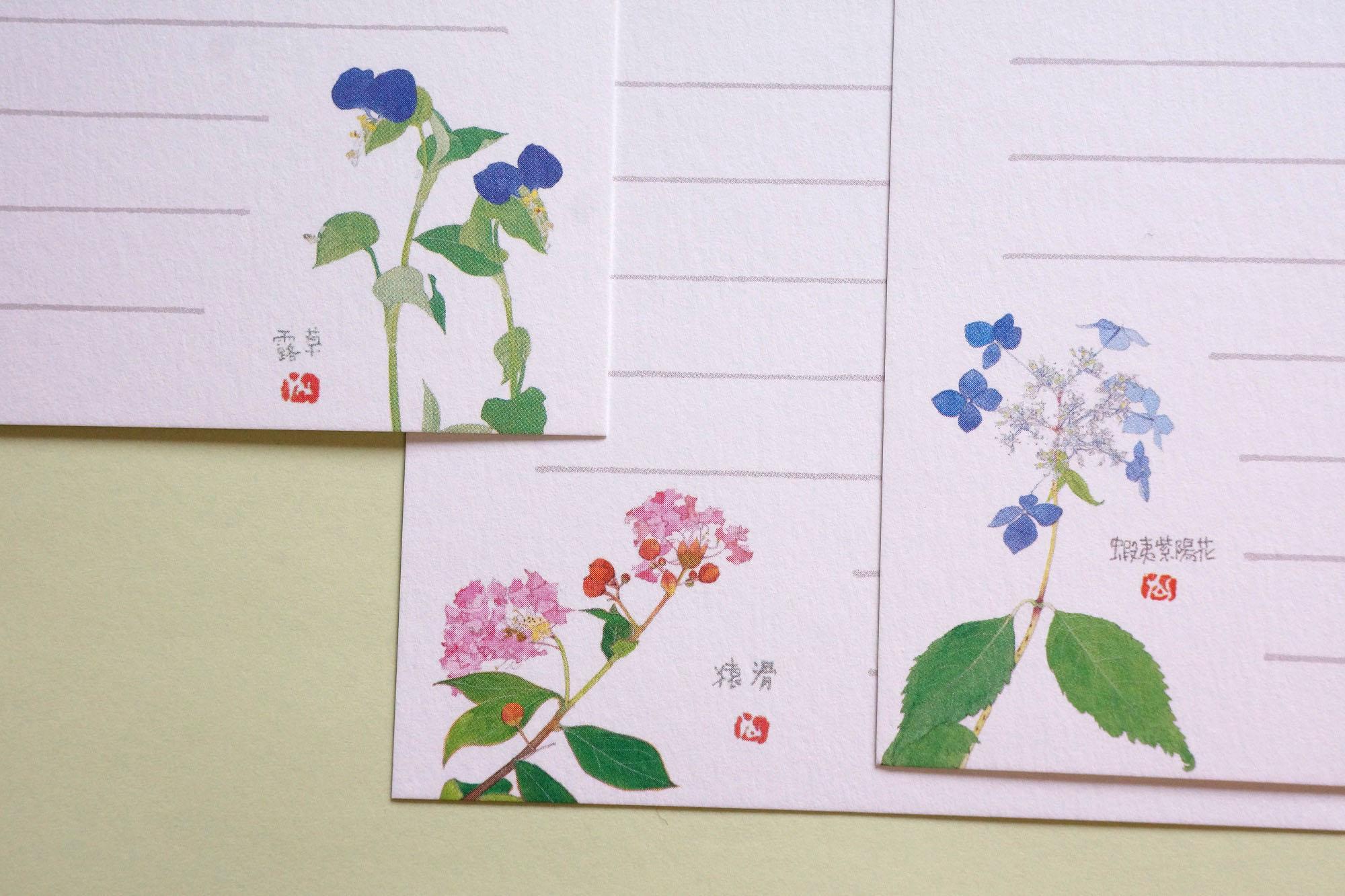 露草 猿滑 蝦夷紫陽花