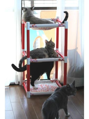<p>&nbsp; </p><p>☆・::::・☆・::::・☆・::::・☆・::::・☆<br>&nbsp;</p><p>画像をクリックすると大きくなります。<br><br>5キロ以上の猫ちゃんのために<br>ちょっと大きめの3段にしました。<br><br><br>丈夫な紙管を使用した3段のハンモックです。<br><br>※2段モックとはサイズが違いますので、<br><br /> 両方の組み合わせはできません。<br><br>約35cmの正方形のところに<br>ハンモックとしての布をセットして使用します。<br><br>組み立てはお客様にてお願いいたします。<br>(組み立て方の説明書をお付けいたします。)<br><br>組み立ての際、紙管に挿入するジョイントの部分は<br>安定性を保つために、やや入りにくくなっています。<br><br>紙管に巻かれている色紙は製作工程において<br>多少の色むらなどがございます。<br><br>寸法(ジョイント含む)<br>縦 420mm       <br>横 420mm<br>高さ 780mm<br><br>内寸(ハンモック部分) 約350mm四方です。<br><br></p>