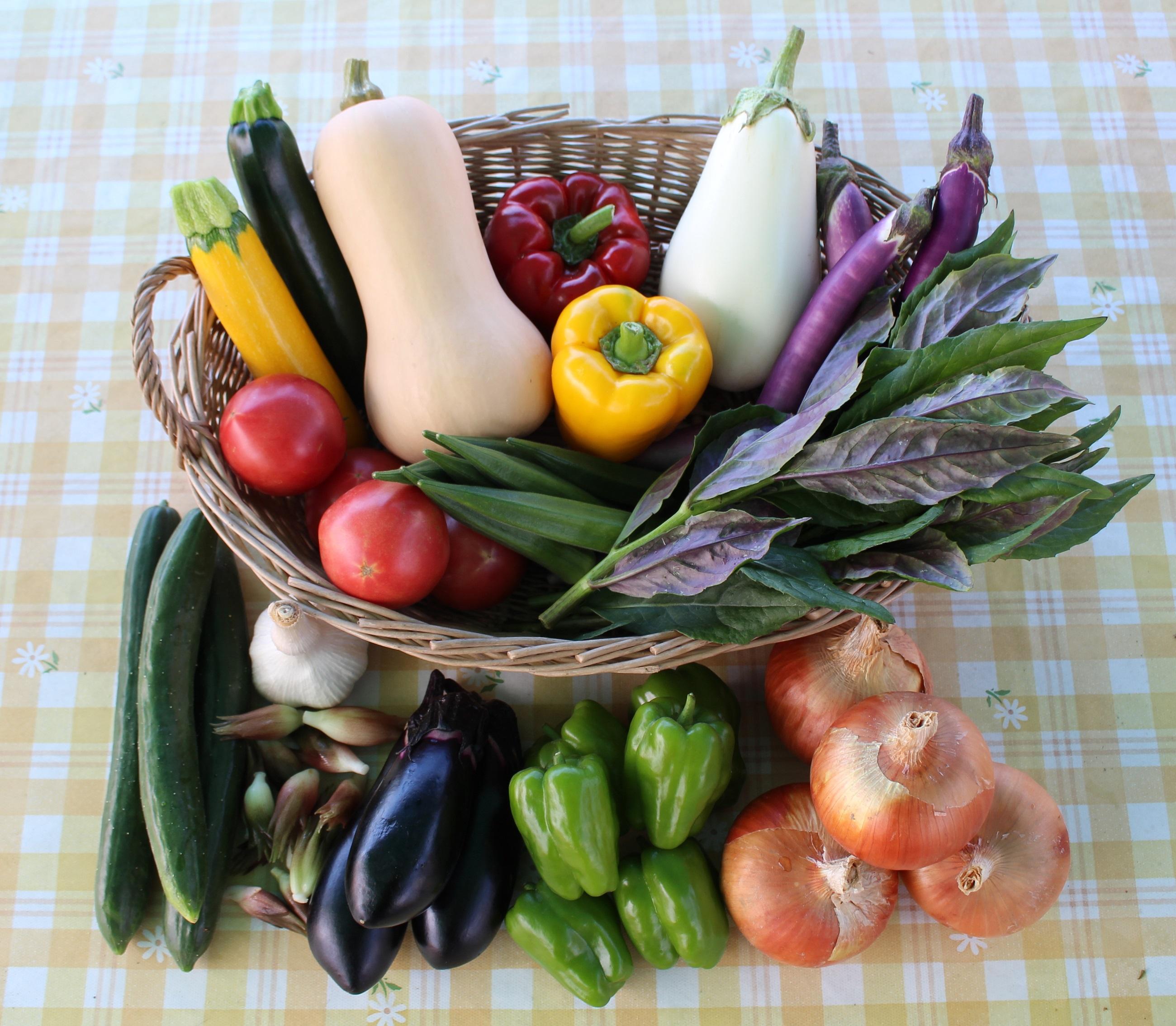 夏野菜セット例
