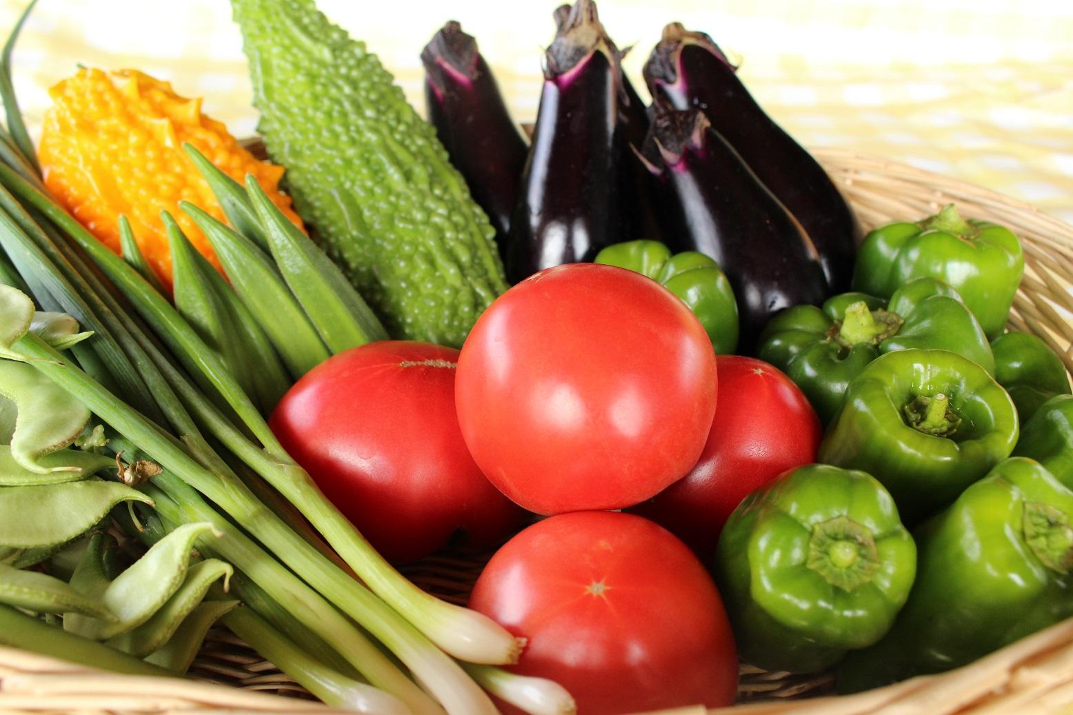 夏野菜のセット例