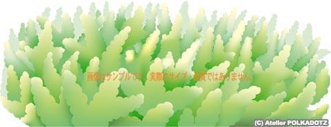 テーブル型サンゴの代表格、ミドリイシのイラスト画像、ベクターイメージ。ファイル形式はai, eps選択可能、 看板・ポスターからステッカーまで拡大縮小自由です。