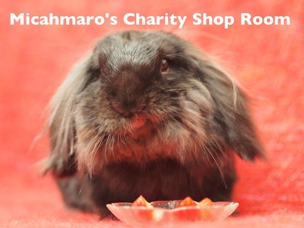 Micahmaro's Charity Shop