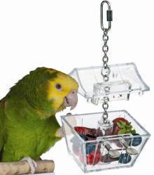 Parrot's Treasure★トレジャーチェスト
