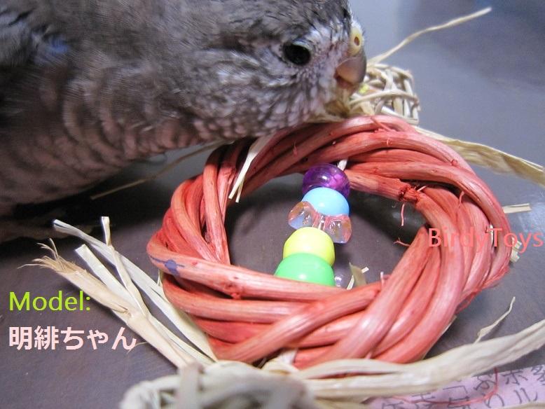 Candy★キャンディー