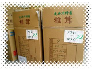 画像は生産家が市場へ出品する時の箱です。