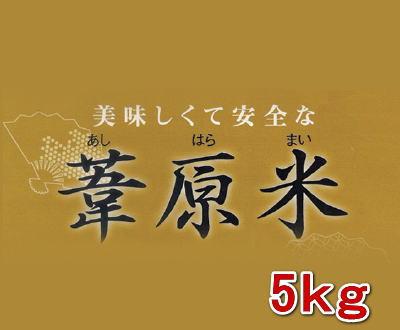 葦原舞(あしはらまい) 5kg