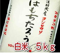 【特別栽培米】はもちたろう 5kg