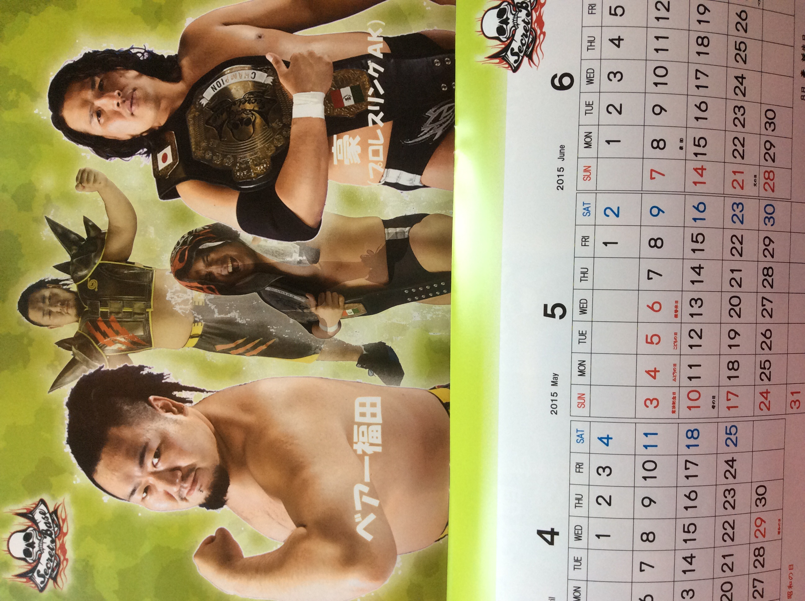 選手のプロフィールも掲載されているパンフレット風カレンダー!