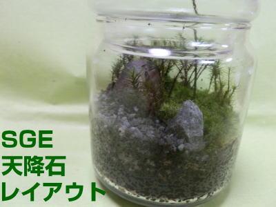 ガラス容器のサイズ:底面直径約9cm、高さ(蓋含む)約15cm