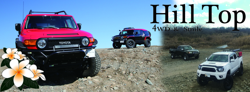 HILL TOP 4X4 and MINI