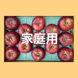 りんご秋映家庭用5kg