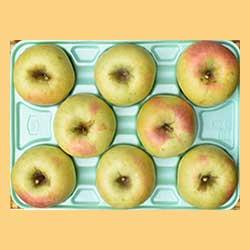 りんごぐんま名月贈答品3kg箱