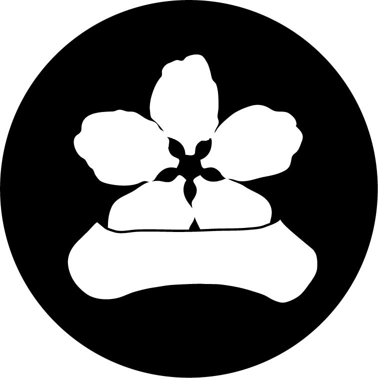 stillichimiyaのホームページ