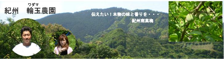 紀州梅干とみかん 輪玉農園