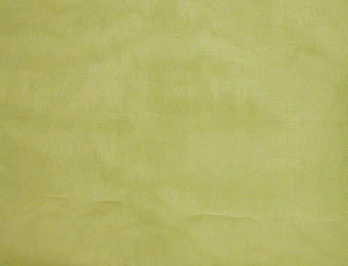 <b>黄緑色のシルクオーガンジーです。</b><div><br></div>