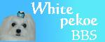 white pekoe BBS