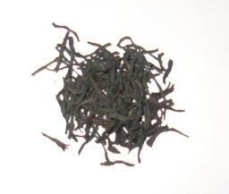 CeylonOP