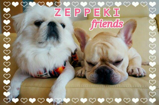 ZEPPEKI-friends