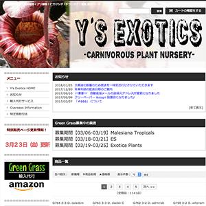 GreenGrass Y's Exotics