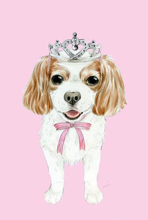 ポストカード:キャバリア[princess][BLENHEIM]