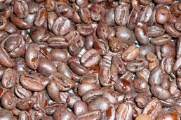 カフェインレスのモカです。