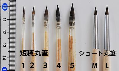 短穂丸筆サイズ比較