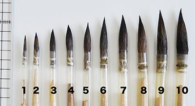 丸筆各種サイズ比較