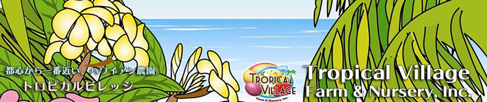 Tropical Village Market